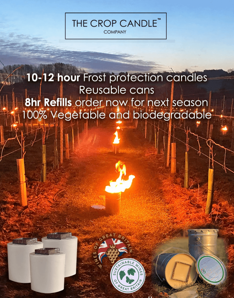 Crop Candles for vineyard