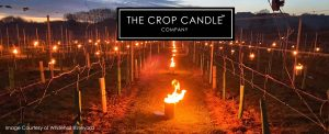 Crop Candle anit frost protection